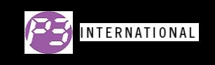 P3 International